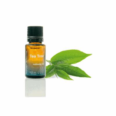 Olejek Tea Tree
